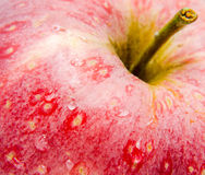 Red apple detail, water drops Stock Photos
