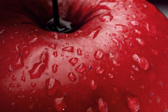 Red apple detail. Water drops on a apple surface closeup Royalty Free Stock Photos