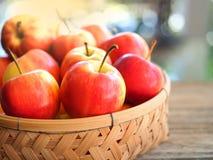 red apple dojrzałe Zdjęcie Stock