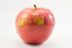 Red apple with drops Stock Photography