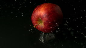 Red apple falling on wet black surface stock video footage