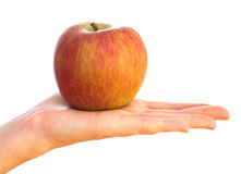 Red apple on female palm Stock Photos