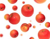 Red Apple Floating. Red Gala apple floating on a white background Royalty Free Stock Photos