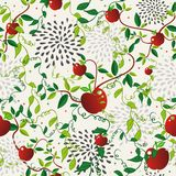 Red apple food seamless pattern Stock Images