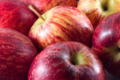 Red apple. Fresh red apple selected for you Stock Photos