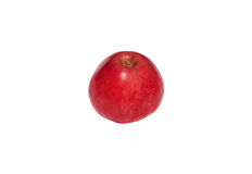 Red apple. Fresh red apple on a white background Stock Images