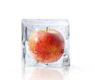 Red Apple frozen inside big ice. Red Apple frozen inside  big ice ice cube with water drops Stock Photos