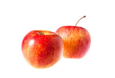 Red apple fruit isolated on white background. Red apple Royalty Free Stock Images