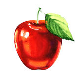 Red apple fruit with leaf  on white background Stock Image
