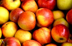 Red Apple Fruits Stock Photo
