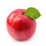 Red apple fruits Royalty Free Stock Image