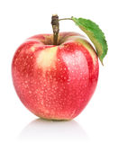 Red apple fruits with leaf Stock Images
