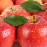 Red apple fruits with leaf Royalty Free Stock Image