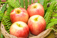 Red Apple fruits. Stock Photos
