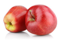 Red apple fruits  on white Royalty Free Stock Images