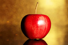 Red apple on gold. Background Stock Images