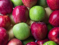 Red apple with green apple. stock image