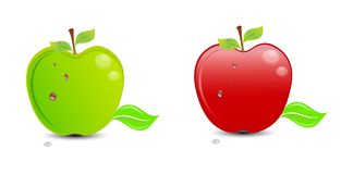 Red apple - green apple Stock Photography