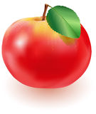 Red apple with green leaf Royalty Free Stock Photo