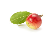 Red apple with green leaf Stock Photos