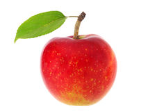 Red apple with green leaf Royalty Free Stock Images