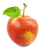 Red apple with green leaf on a white background Stock Photos