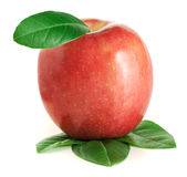 Red apple with green leaves. On the white background Stock Photography