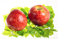 Red apple on green leaves Royalty Free Stock Photography