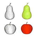 Red apple and green pear graphic. contour and color. Isoleted on white Royalty Free Stock Photography