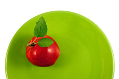 Red apple on a green plate Royalty Free Stock Images