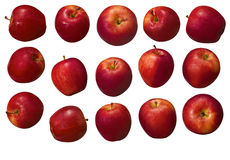 Red Apple Group Stock Photos