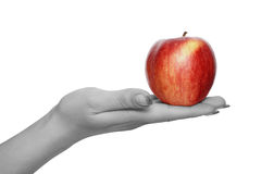 Red apple in  hand. Apple in hand isolated over white background Stock Photos