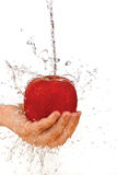 Red apple in hand under flowing water Royalty Free Stock Images