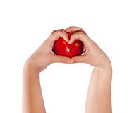Red apple in hands heart Stock Photo