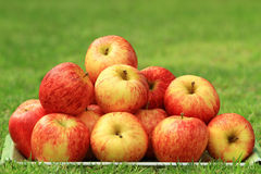 Red apple heap on the grass. Red apple heap on the grass during the day Royalty Free Stock Images