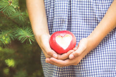 Red apple with heart shape Stock Photography