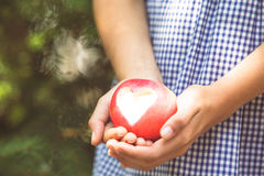 Red apple with heart shape Stock Images