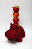 Red apple and hippo Stock Images