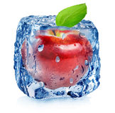 Red apple in ice Stock Images