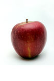 Red apple. Image of a red apple on a white background Stock Photos