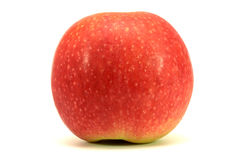 Red apple isolated. One red apple on the white background royalty free stock photography
