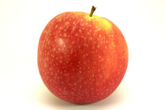 Red apple isolated. One red apple on the white background stock photos