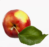 Red apple isolated Royalty Free Stock Images