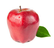 Red apple isolated Royalty Free Stock Image