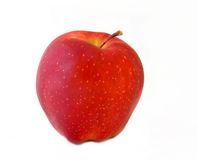 Red apple. Isolated single red apple on white bacground Royalty Free Stock Photography