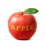 Red apple isolated with text Royalty Free Stock Images