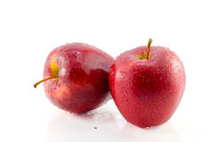 Red apple isolated on white with clipping path Stock Photos