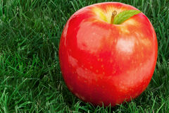 Red apple and its leaf on grass Royalty Free Stock Images