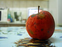Red apple on the kitchen Royalty Free Stock Photos
