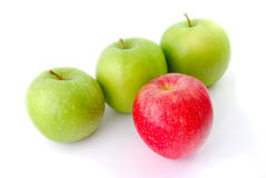 Red apple leading a group of three apples. A group of apples with a single red apple standing out from the crowd. Suitable for concepts and ideas such as royalty free stock image